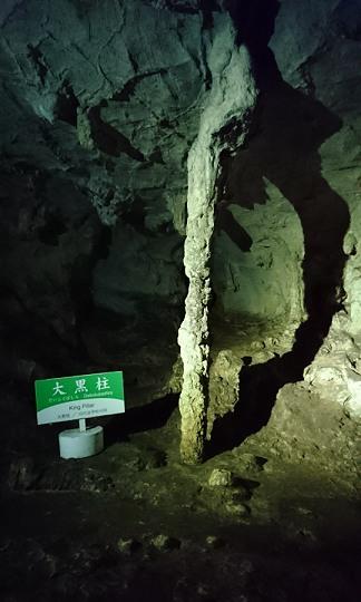 秋芳洞の大黒柱