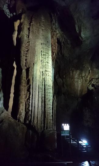 秋芳洞の黄金柱