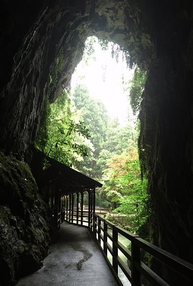 洞窟内から見た入り口