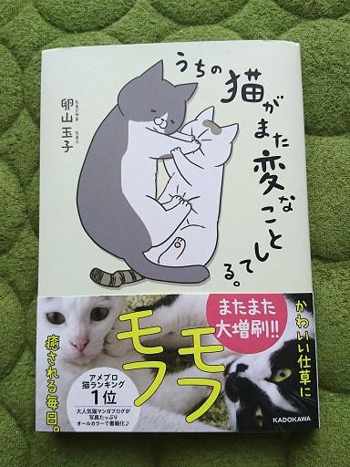 うちの猫がまた変なことしてる。の表紙