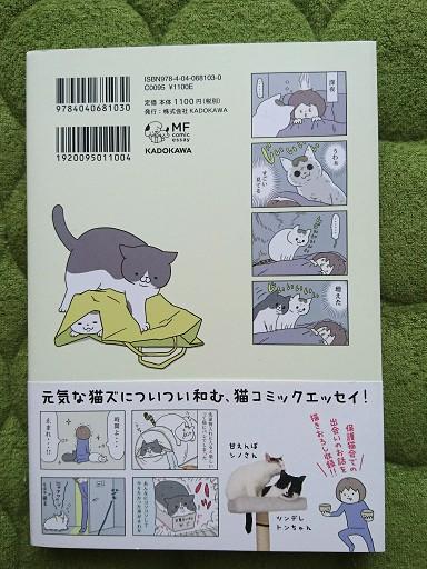 うちの猫がまた変なことしてる。の裏表紙