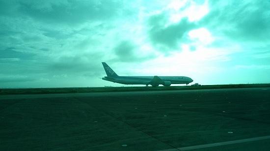 羽田空港から見える飛行機