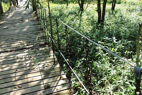 釧路市湿原展望台の木道