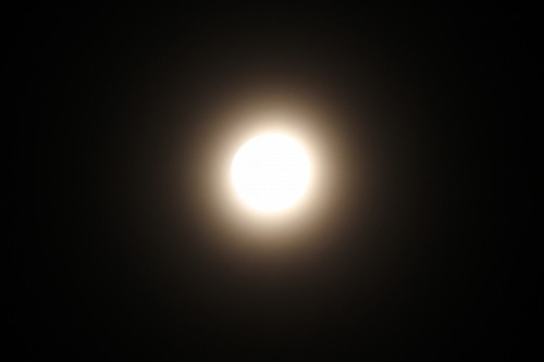 スーパームーン前夜の月