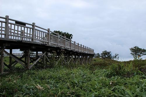 知床五湖の高架木道