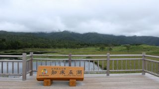 【9月・道東旅行4日目 その2】知床五湖へ向かいました