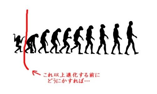 人類の進化図