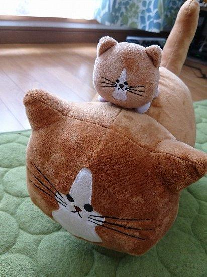 猫のぽんたのぬいぐるみ