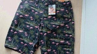 【アメリカンイーグル メンズ用】サファリ系のパンツとシャツを購入