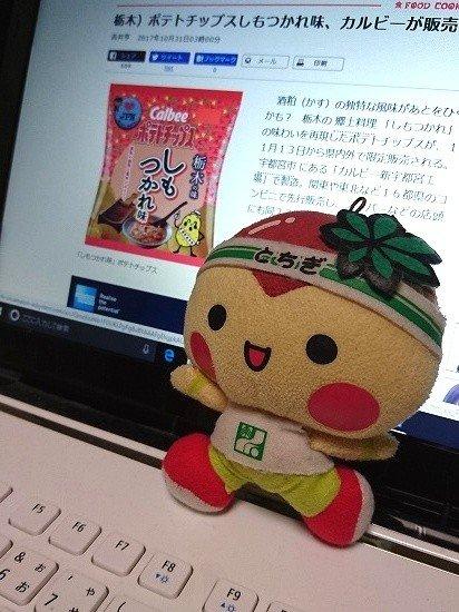 【カルビー】栃木の味 しもつかれ味のポテトチップととちまるくんのぬいぐるみ